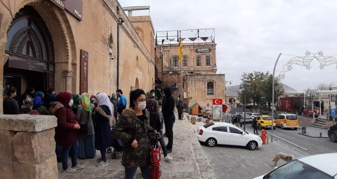 Mardin'de korkutan kuruk