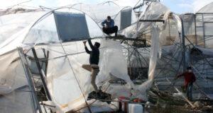 Mersin'de şiddetli rüzgar seraları yerle bir etti