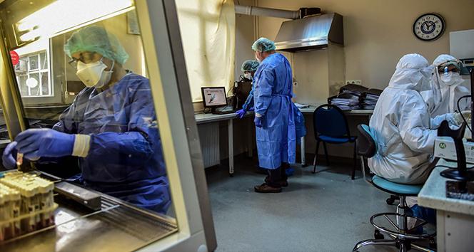 Son 24 saatte korona virüsten 341 kişi hayatını kaybetti