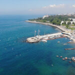 marmara-denizi-ndeki-musilaji-arastirmak-icin-komisyon-kurulmasina-karar-verildi-60c259e40be42