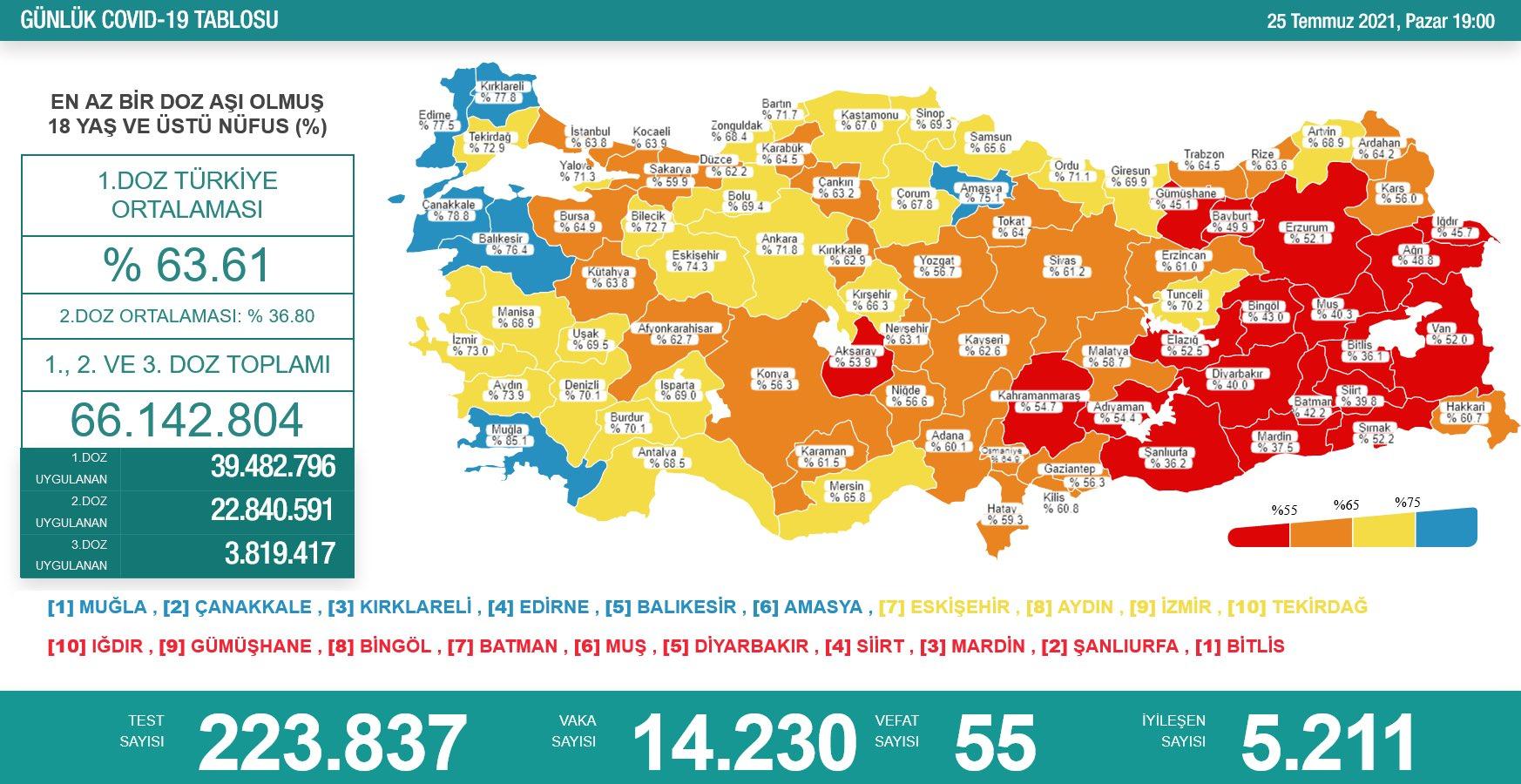 Amasya aşı haritasında 'Mavi' renkte