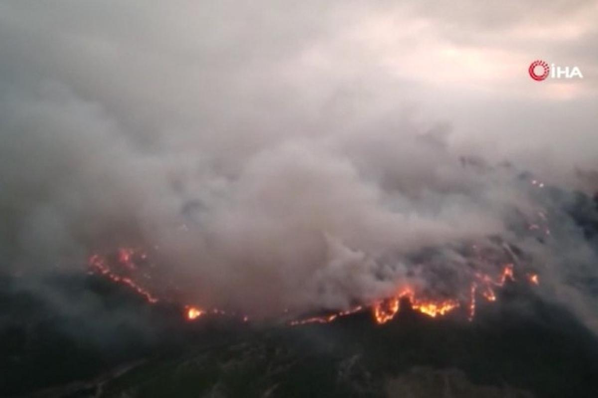 MSB:'Mehmetçik yangın bölgesinde canla başla çalışıyor'