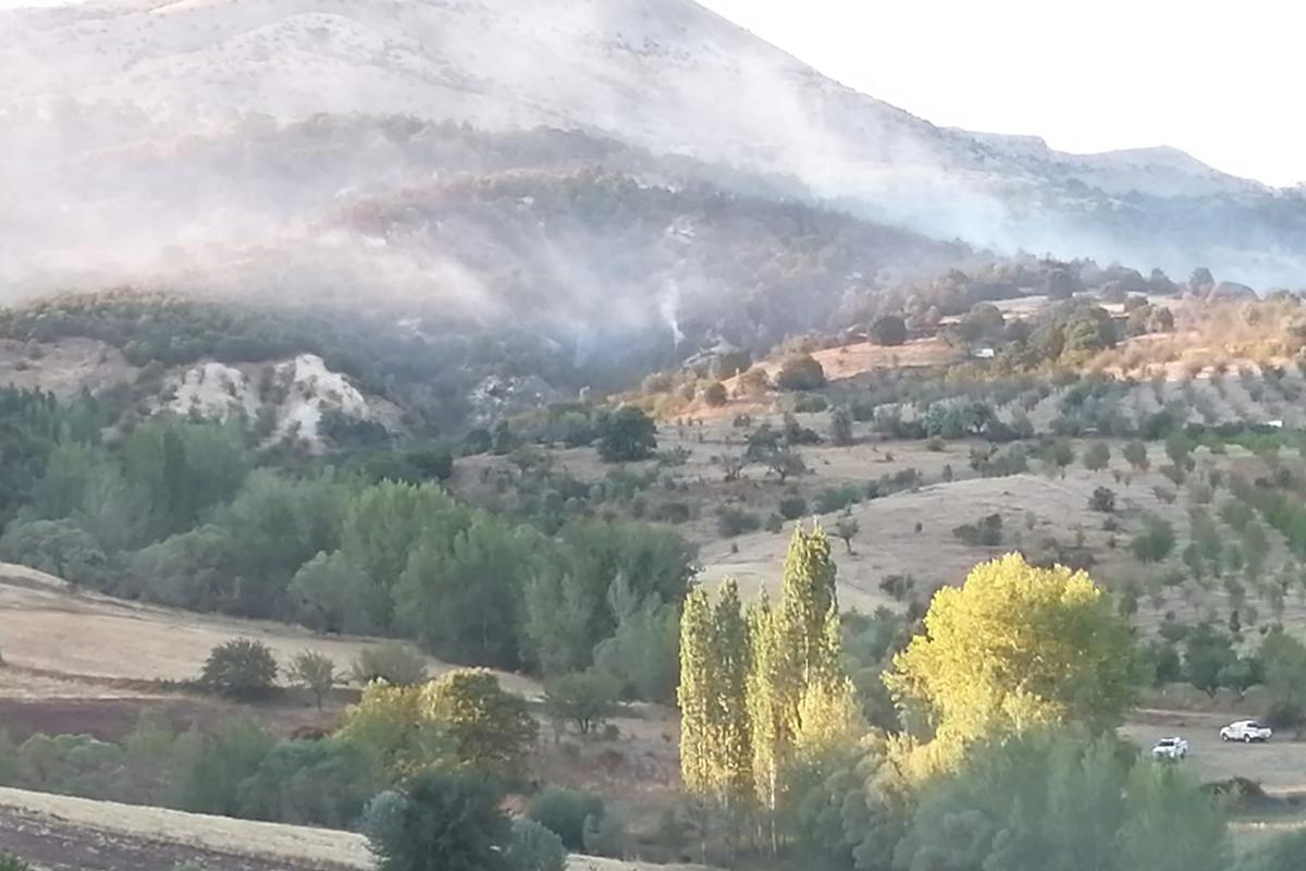 Ankara Çubuk'ta orman yangını